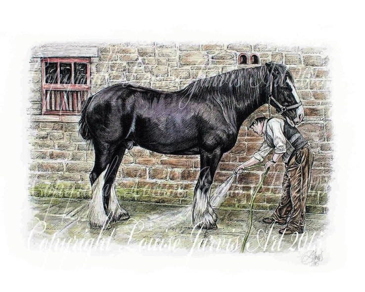 top equine artist, equine art, horse portraits commissioned pen and watercolour and ink portrait by Louise Jarvis Art scottish animal artist, pet portraits, dog portraits, commission a portrait, crufts, top best animal artist, perthshire scotland, uk, Pictures