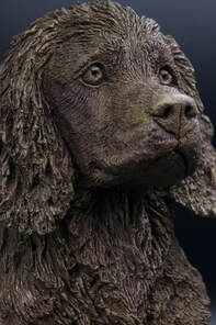 bronze sculpture, field trial, Ben randall, ftch, field trial champion,gundog trainer, Beggarbush, cocker spaniel, Fatty, Heolybwlch Fatty, dog, sculpture, artist, louise jarvis, crufts, scotland, canine, artist, art, sculpture, bust, marble, bronze bust, brown cocker spaniel, gundog, shooting, working dog, sculpt, animal artist, uk, realistic, detail, clay, working test, gundog journal, field sports, game fair, sculptor